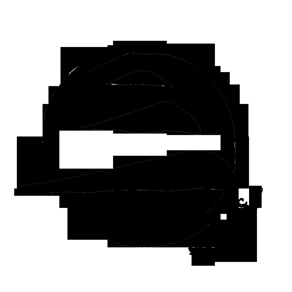 logo fly surf